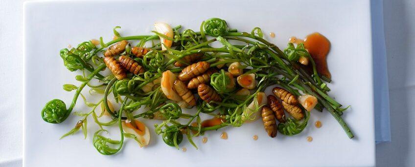 Sautéed fiddleheads with garlic and silworms (Rau choại (rau dớn) xào tỏi và nhộng tằm)