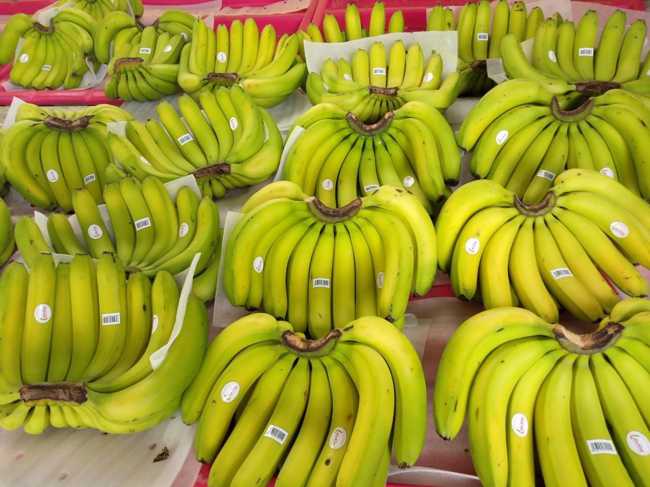 Laba bananas