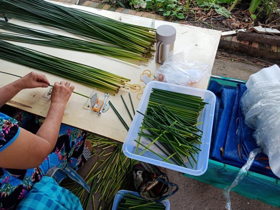Lepironia grass straws