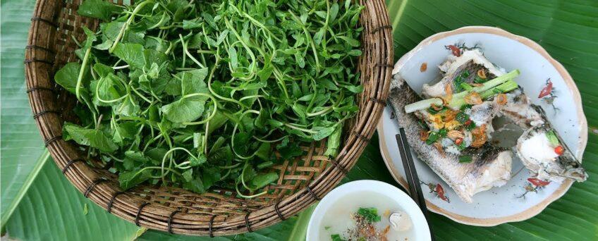 bitter vegetables in Vietnamese cuisine