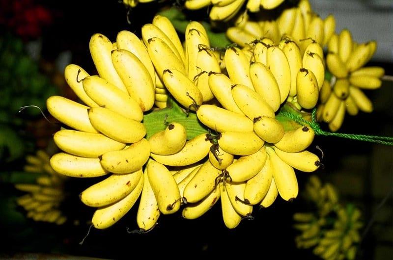 bom banana