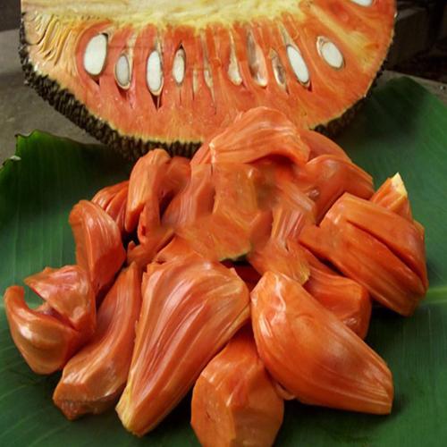red-fleshed jackfruit