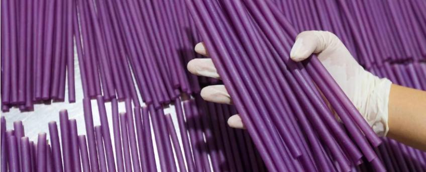 rice straws vietnam