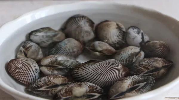 soaking hairy ark clams