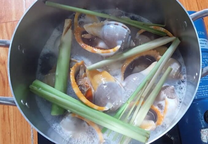 steaming garlic snails