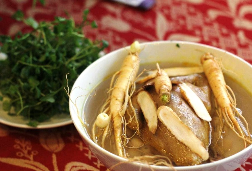 stewed chicken with codonopsis roots
