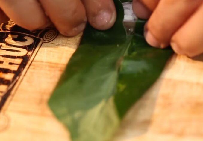 wrapping fish cigars