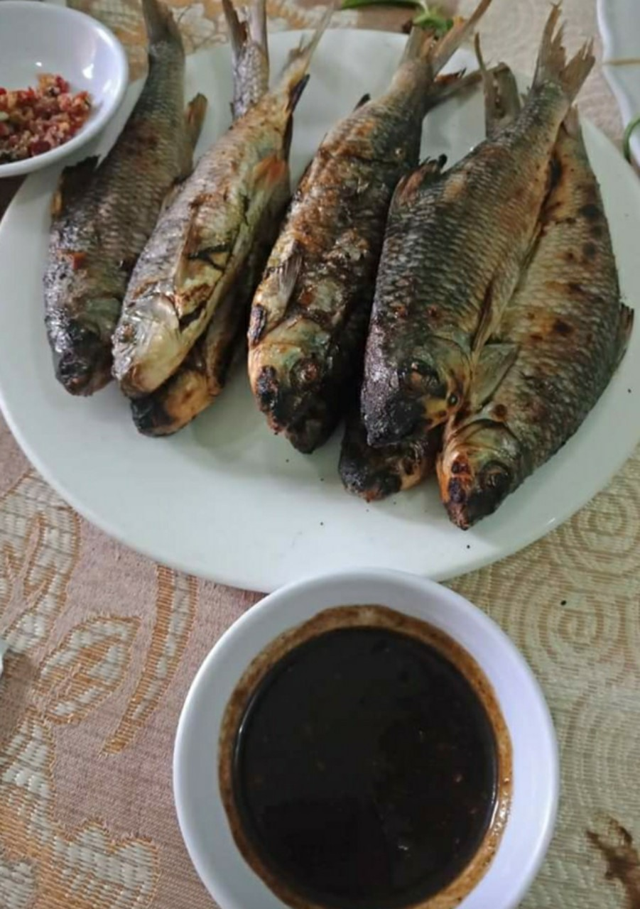 Grilled Onychostoma fish with the condiment made from fish intestines