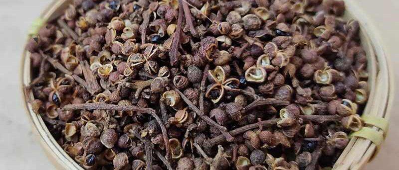 Zanthoxylum rhetsa pepper