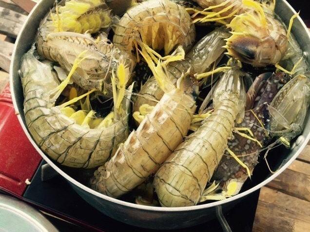 mantis shrimp boil