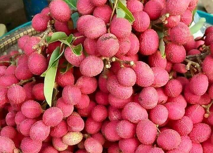 Nephelium hypoleucum - Korlan fruits sold in Vietnam