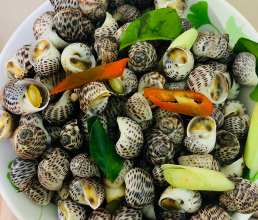 Steamed Tiger Moon Snails with Lemongrass and Chili