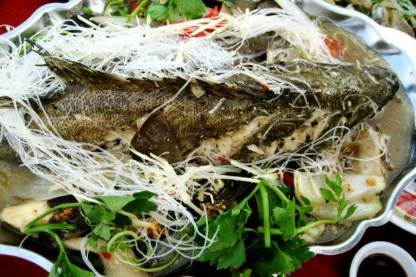 Steamed marble goby with soy sauce, and mung bean vermicelli