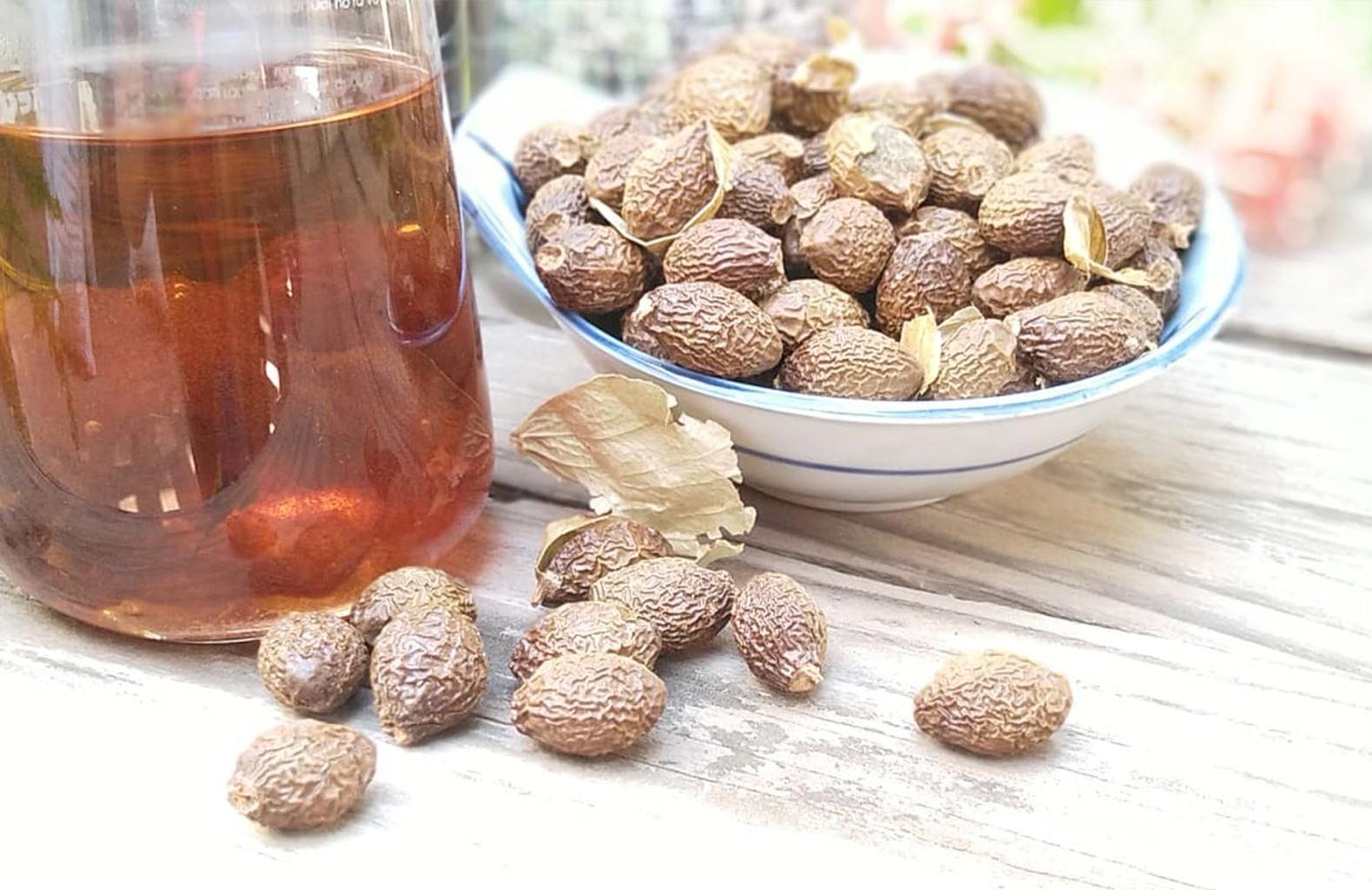 Vietnamese malva nuts