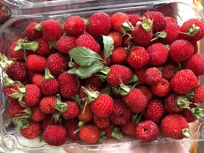 Vietnamese raspberries