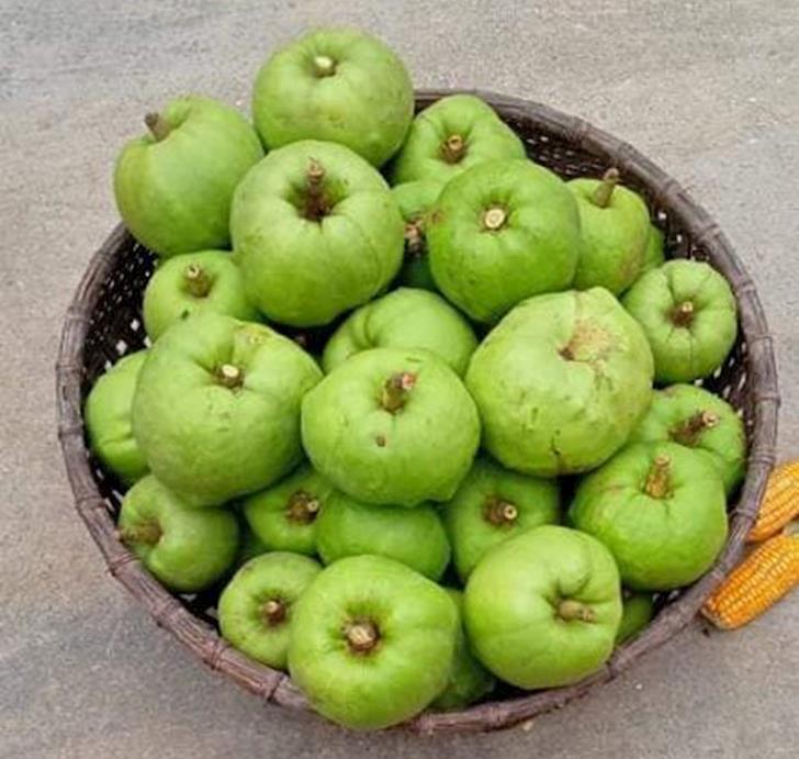 green cowa fruits