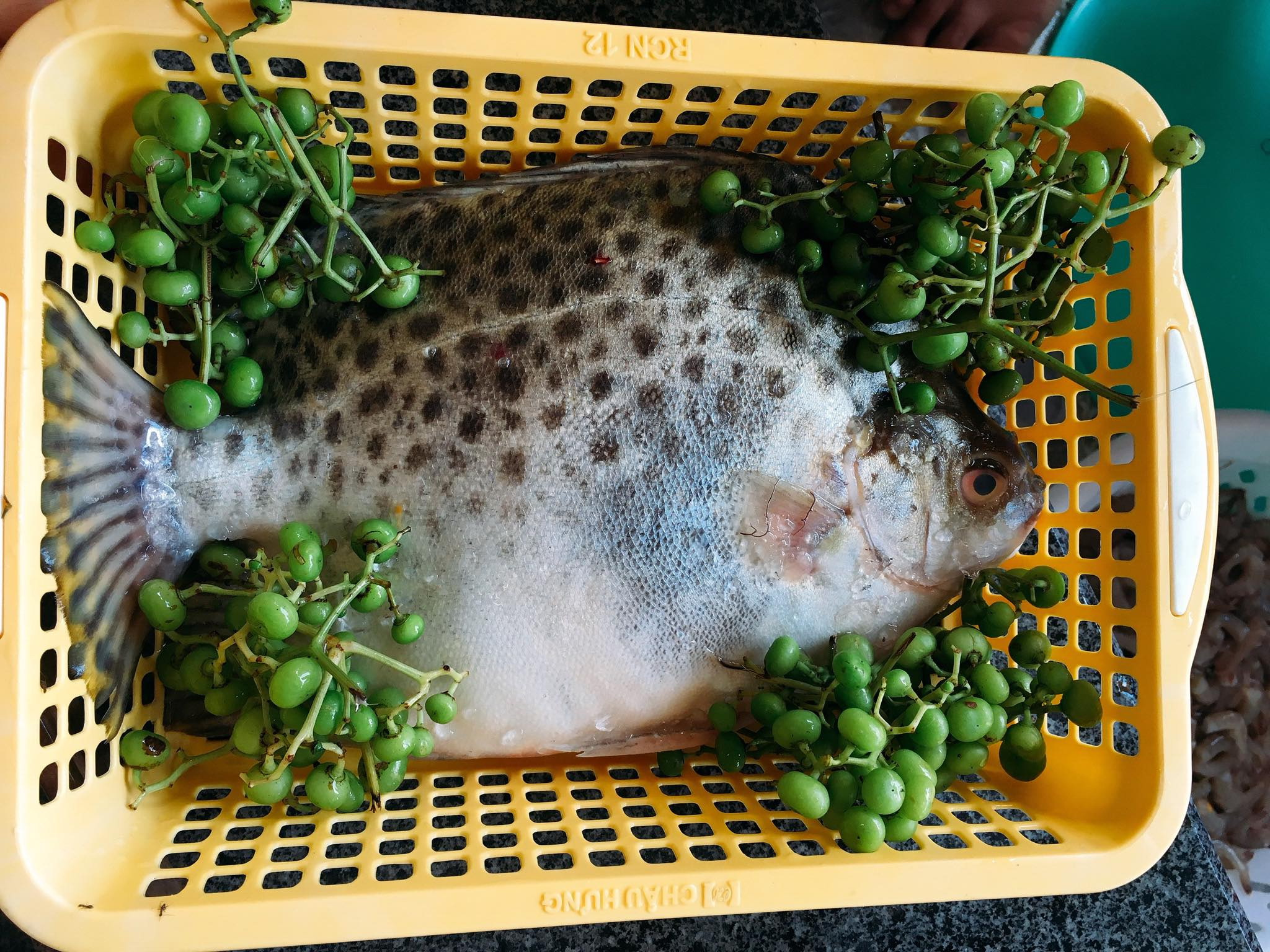 scat fish with bush grapes